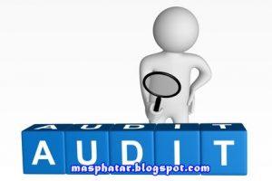 telecom-audit